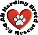 All Herding Breed Dog Rescue